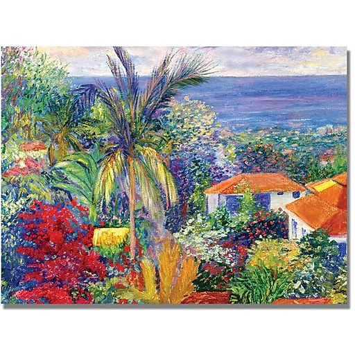"Trademark Global Manor Shadian ""Maui"" Canvas Art, 35"" x 47"""