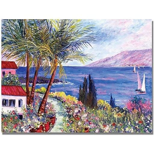 "Trademark Global Manor Shadian ""Villa in Maui"" Canvas Art, 30"" x 47"""