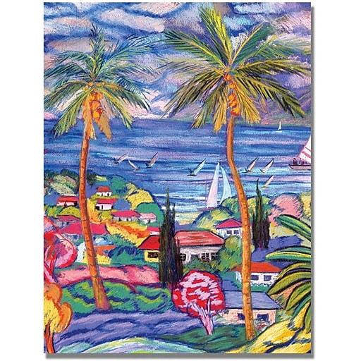 """Trademark Global Manor Shadian """"Hawaii Wind Surf"""" Canvas Art, 35"""" x 47"""""""