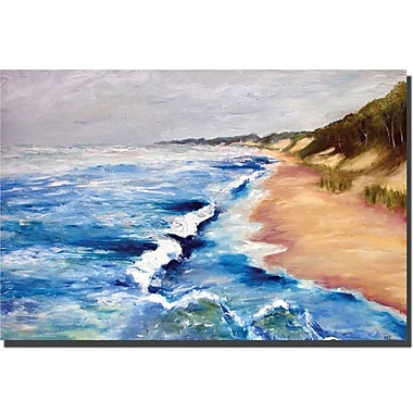 Trademark Fine Art Lake Michigan Beach with Whitecaps I Michelle Calkins