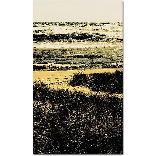 "Trademark Global Michelle Calkins ""The Lone Gull"" Canvas Art, 32"" x 24"""