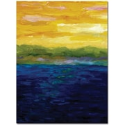 "Trademark Global Michelle Calkins ""Gold and Pink Sunset"" Canvas Art, Modern Style, 47"" x 35"""
