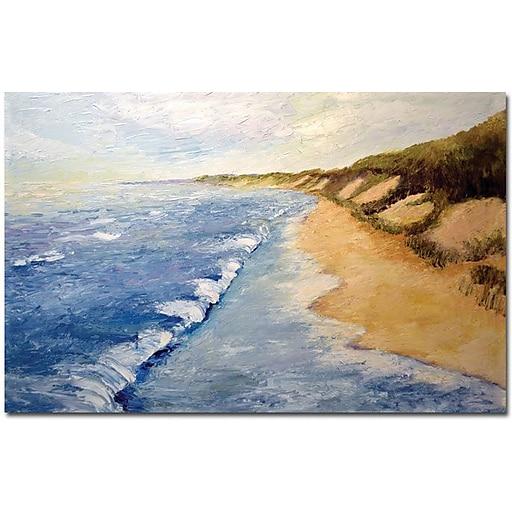 "Trademark Global Michelle Calkins ""Lake Michigan Whitecaps"" Canvas Art, 35"" x 47"""