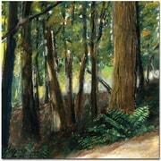 "Trademark Global Michelle Calkins ""Livingston Trail"" Canvas Art, 24"" x 24"""