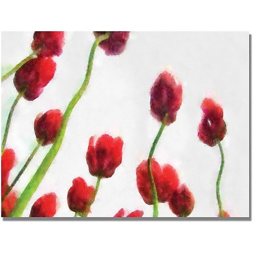 "Trademark Global Michelle Calkins ""Red Tulips from Bottom Up IV"" Canvas Art, 18"" x 24"""