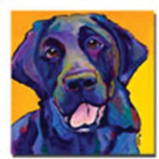 "Trademark Global Pat Saunders White ""Buddy"" Canvas Art, 24"" x 24"""