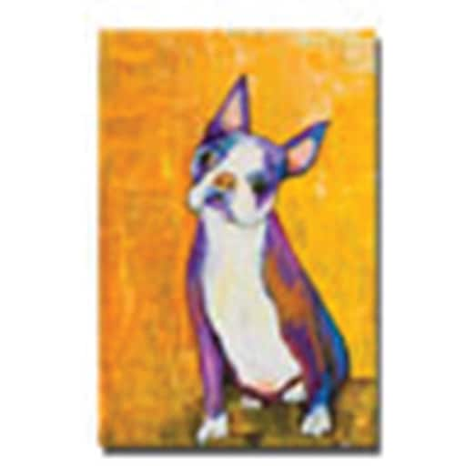 "Trademark Global Pat Saunders White ""Cosmo"" Canvas Art, 47"" x 30"""