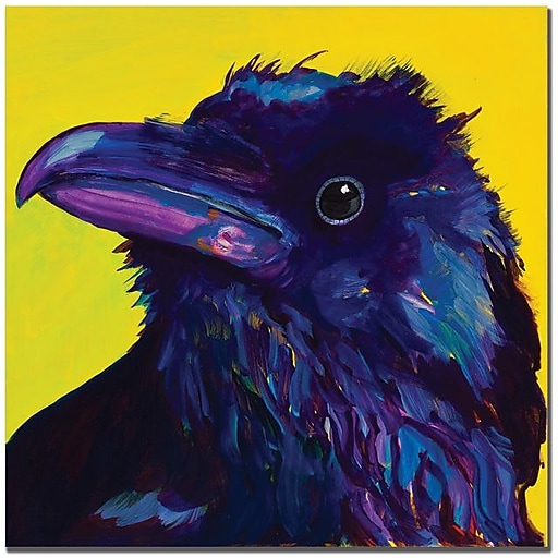 "Trademark Global Pat Saunders White ""Corvus"" Canvas Art, 18"" x 18"""
