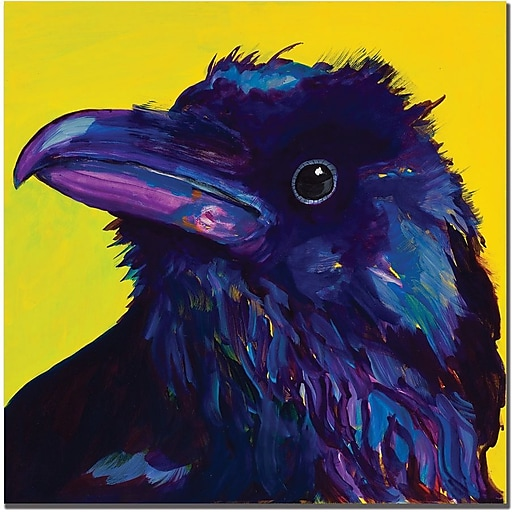 "Trademark Global Pat Saunders White ""Corvus"" Canvas Art, 24"" x 24"""