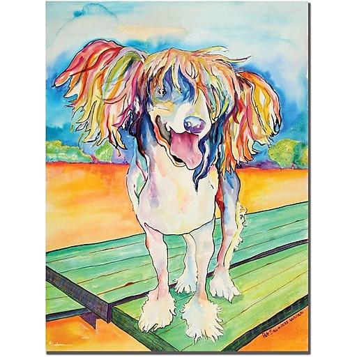 "Trademark Global Pat Saunders White ""Mango Salsa"" Canvas Art, 47"" x 35"""