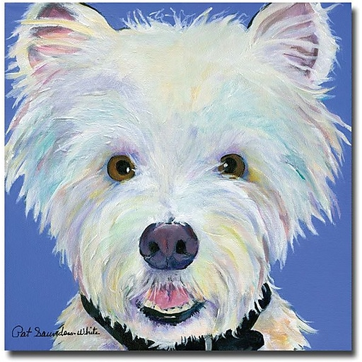 "Trademark Global Pat Saunders White ""Amos"" Canvas Art, 18"" x 18"""