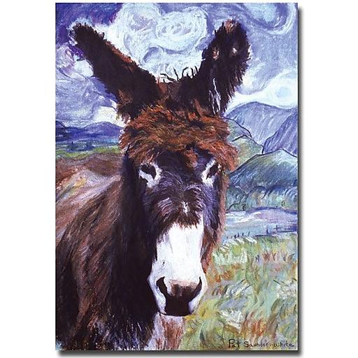 "Trademark Global Pat Saunders White ""Carrot Top"" Canvas Art, 24"" x 16"""