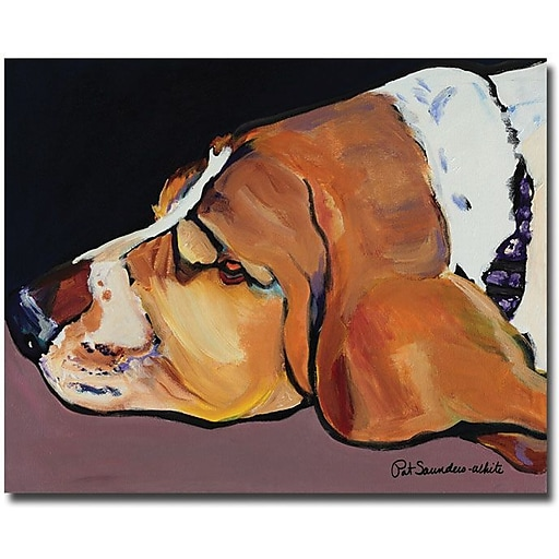 "Trademark Global Pat Saunders White ""Farley"" Canvas Art, 35"" x 47"""