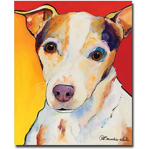 """Trademark Global Pat Saunders White """"Polly"""" Canvas Art, 32"""" x 26"""""""