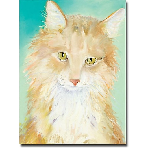 "Trademark Global Pat Saunders White ""Willard"" Canvas Art, 32"" x 24"""