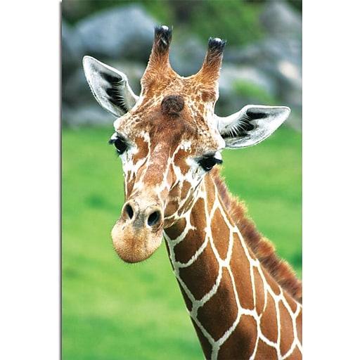 "Trademark Global Patty Tuggle ""Giraffe Hello"" Canvas Art, 24"" x 16"""