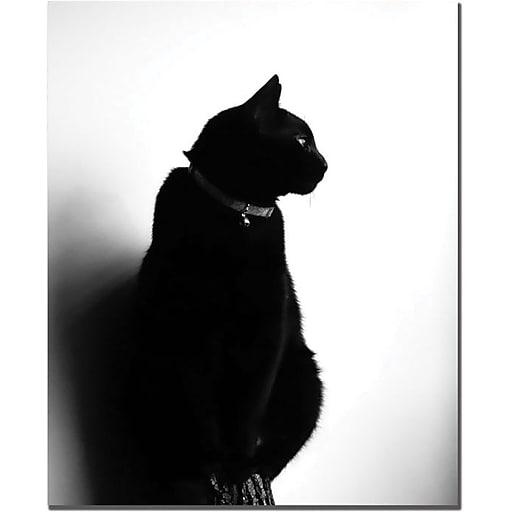 "Trademark Global Tammy Davison ""Chat Noir"" Canvas Art, 19"" x 14"""