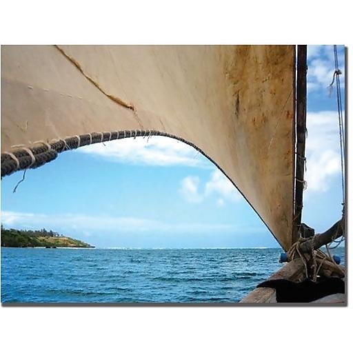 "Trademark Global Tammy Davison ""Kenya Sail"" Canvas Art, 24"" x 24"""