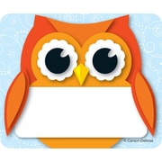Carson-Dellosa Colorful Owl, Name Tags, 40 Name Tagss