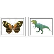 Key Education Publishing® Alphabet Photo Objects Language Cards, Grades pre-kindergarten - 1st