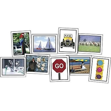 Key Education Publishing® What's Wrong? Photographic Learning Cards, Grades pre-kindergarten - 1st
