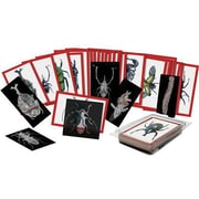 Roylco® Insect X-Rays and Picture Cards Set