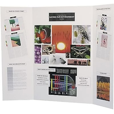 Flipside® Science Fair Project Board, Assorted, 9/Carton