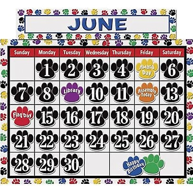 Teacher Created Resources Calendar Bulletin Board Display Set, Colourful Paw Prints, 136/Pack (TCR4328)