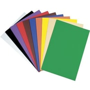 Chenille Kraft Wonderfoam Sheets, Assorted Colour, 10/Pack (CK-4318)