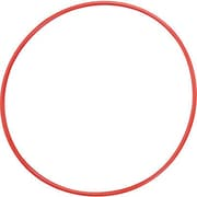 Champion Sports® Plastic Hoop,24""