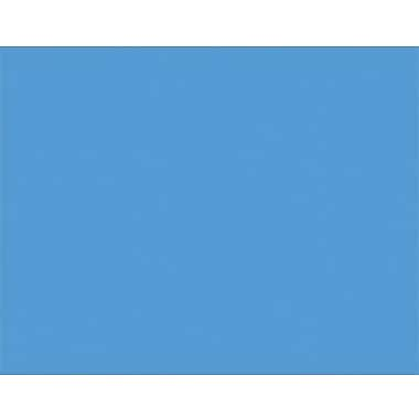 Pacon® 4-Ply Railroad Poster Boards