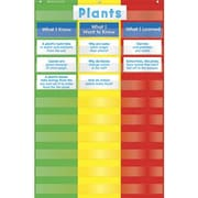 Scholastic - Teacher's Friend TF5114 3-Column Pocket Chart