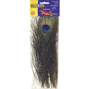 Chenille Craft Peacock Feathers, 24/Pack (CK-4515)