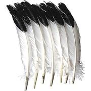 Chenille Kraft - Imitation de plumes d'aigle, 48/paquet (CK-4512)
