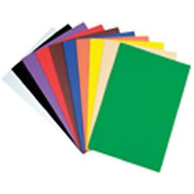 Chenille Craft Large Sheets, Assorted, 20/Pack (CK-4313)