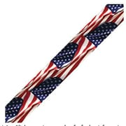 "Edupress Photo Border EP3091 39"" x 3"" Straight Patriotic Flag Border, Multicolor"