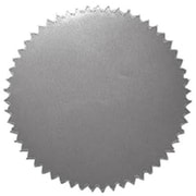 Hayes Silver Stickers, Blank, 200/Pack (H-VA315)