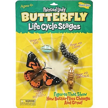 Insect Lore Butterfly Life Cycle Stages Figures (ILP4760)