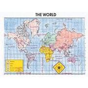 McDonald Publishing® Activity Poster, The World