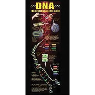 McDonald Publishing Colossal Poster, DNA Concept (MC-V1652)