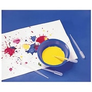 Roylco® Paint Pipettes, P - 3