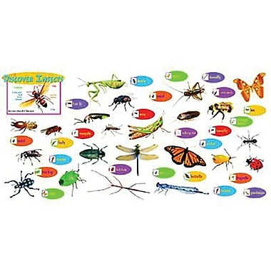 Trend Enterprises® Mini Bulletin Board Set, Discover Insects