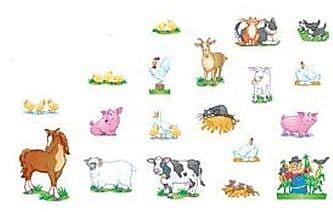 North Star Teacher Resource Bulletin Board Accents, Farm Animals