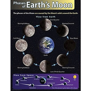 Trend Enterprises® Phases of Earth's Moon Learning Chart