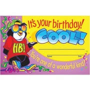 "Trend Enterprises It's Your Birthday! Cool! Certificate, 5 1/2"" X 8 1/2"", 240/Pack (T-8102)"