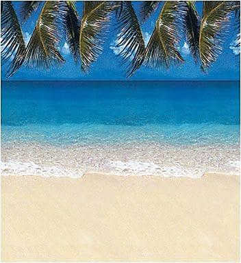 Pacon® Fadeless® Design Paper, Tropical Beach, 48