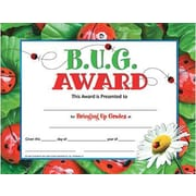 "Hayes B.u.g. Award Certificate, 8.5"" X 11"", 90/Pack (H-VA591)"