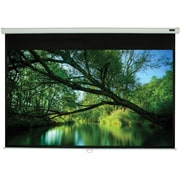"EluneVision 120"" Triton Manual Pull-Down Projector Screen, 16:9"