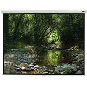 "EluneVision 70"" x 70"" Manual Pull-Down Projector Screen"