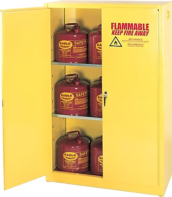 Safety Cabinets & Shelves